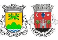 Brasão da freguesia de Magueija e do concelho de Lamego